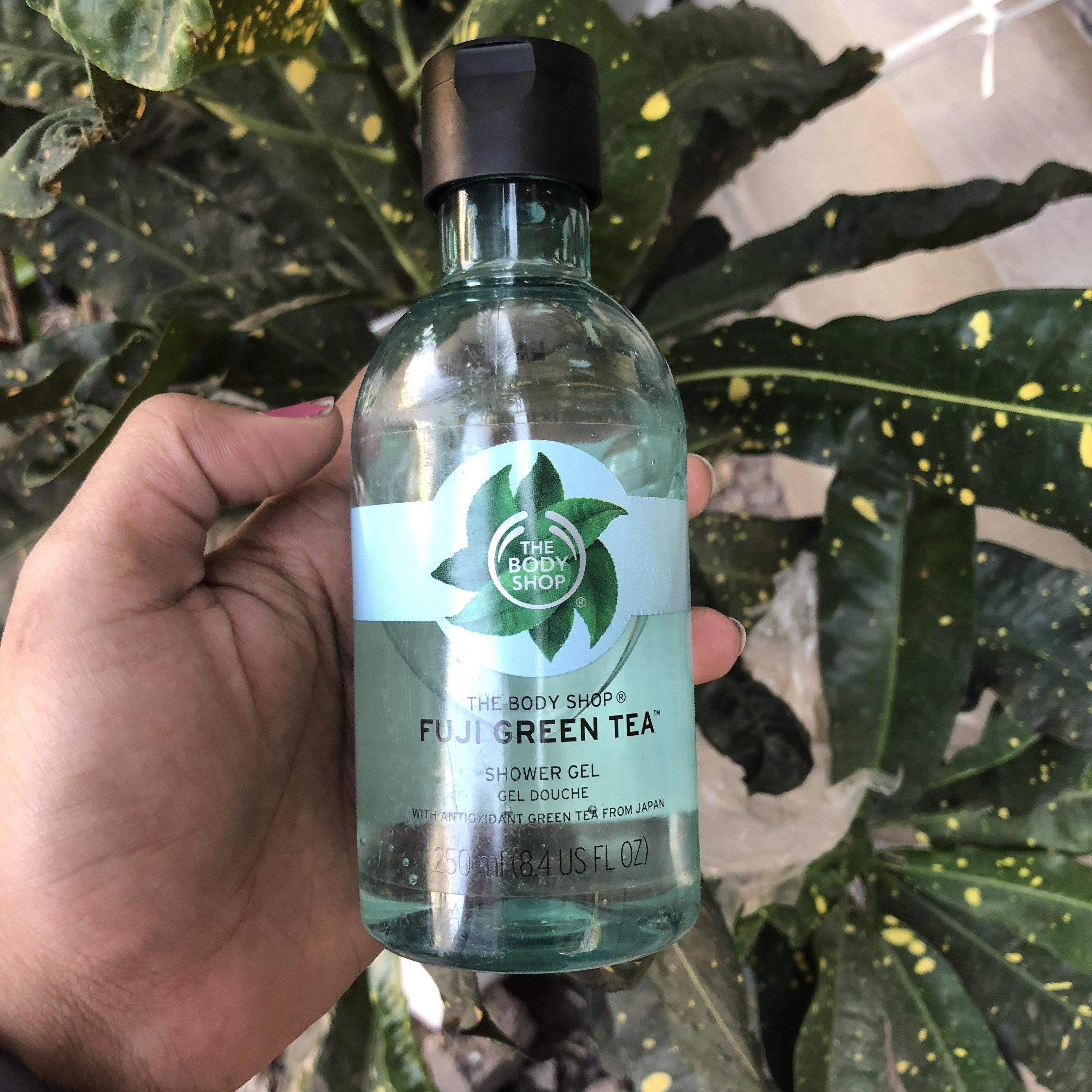 The Body Shop Fuji Green Tea Shower Gel Featured Image